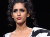    (IV)    (lakme fashion week photo gallery)